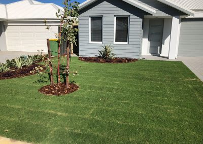 new-home-landscaping-6